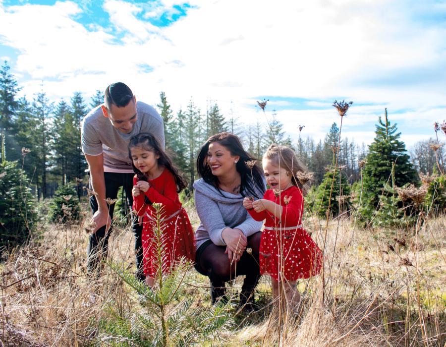 bailey-family-christmas-card-photos-group-photo-xmas-trees-straight